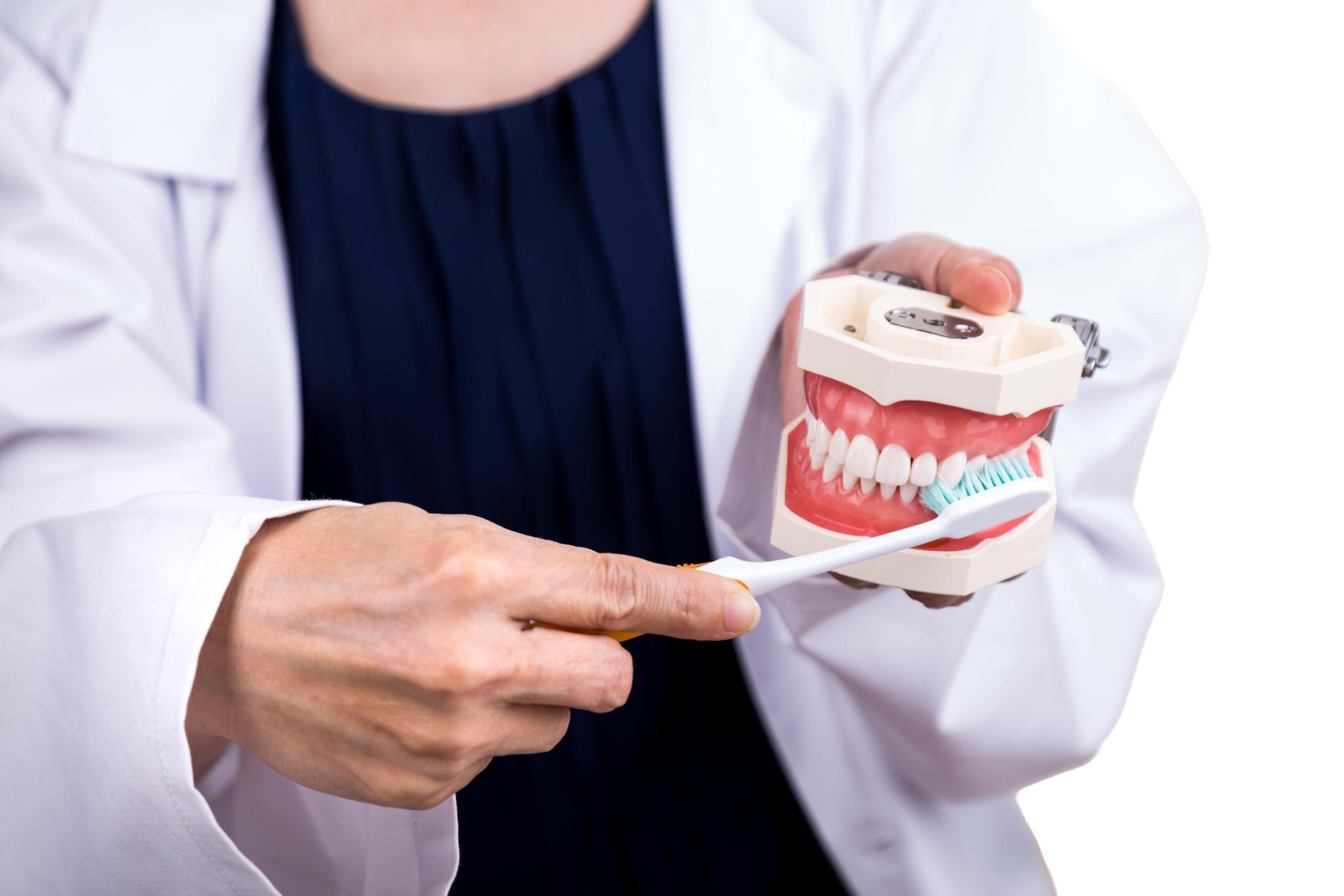 Periodontics gum dentist